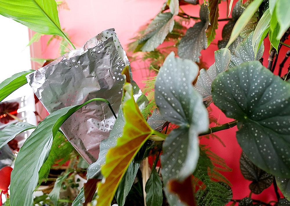 Защита и естествена светлина за растенията