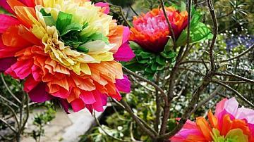 Как да си направим големи цветя от креп хартия