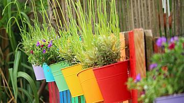 Как да си направите градина на оградата или балкона?