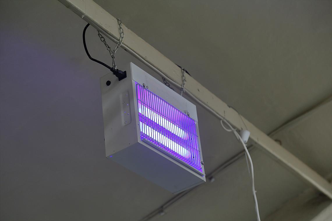 UV капан за насекоми, окачен на греда ще привлича и убива комарите