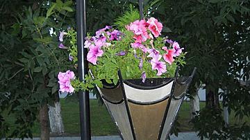 Чадъри за украса в градината