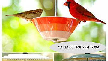 Как да си направим цветна хранилка за птици