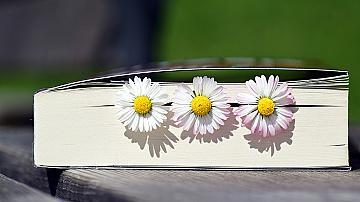 Ето как да си направим страхотен разделител за книги