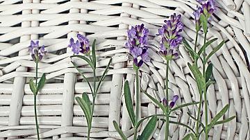 Навързани кошници с цветя за градината