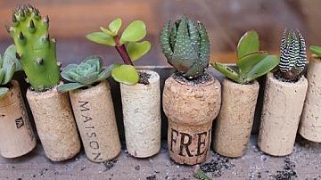 Как да си направим мини градина от коркови тапи за вратата на хладилника