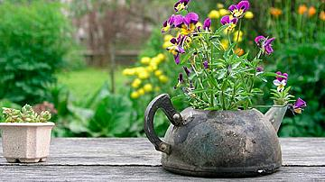 Оригинални саксии за цветя от стари вещи