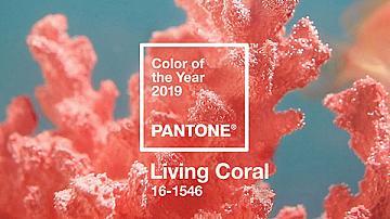 Знаете ли кой е модерният цвят на годината? Цветът на живия корал!