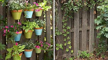 Украсете оградата си с цветна градина