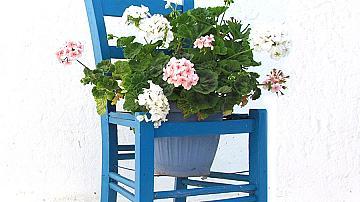 Цветарник за градината от стария стол